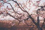 tumblr p5hwya9Im91vw48cvo2 1280